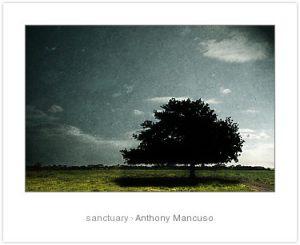 3882985-2-sanctuary
